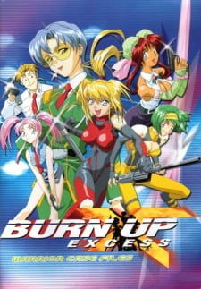 Burn Up Excess
