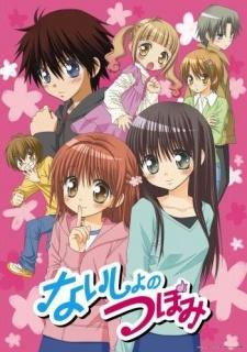 Naisho no Tsubomi OVA